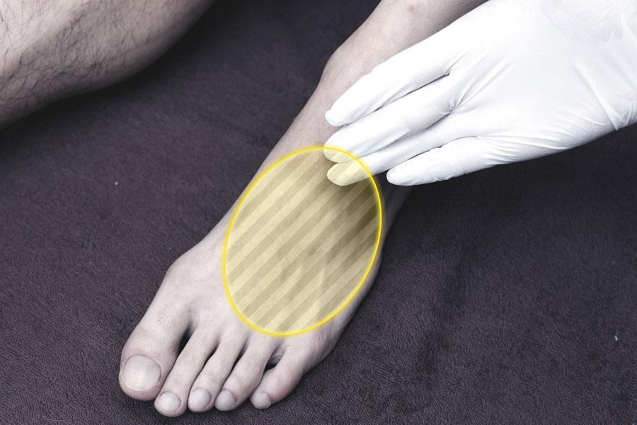 足の甲 image